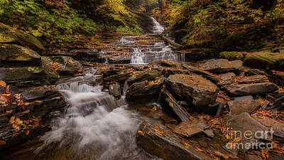 Photograph - Ricketts Glen 2 by Jerry Fornarotto