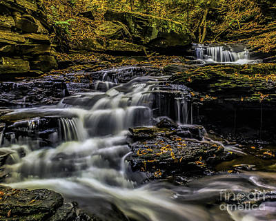 Photograph - Ricketts Glen Cascades by Nick Zelinsky