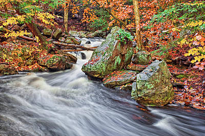Popular Photograph - Ricketts Glen  by Marcia Colelli