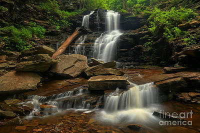 Photograph - Ricketts Glen Shawnee Falls Cascades by Adam Jewell
