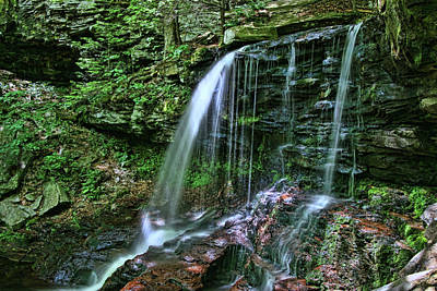 Photograph - Ricketts Glen S P - B. Reynolds Falls by Allen Beatty