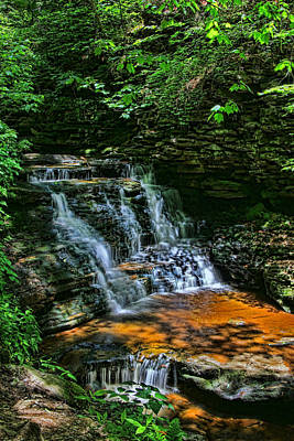 Photograph - Ricketts Glen S P - Conestoga  Falls by Allen Beatty