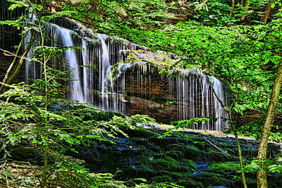 Ricketts Glen S P - Mohawk  Falls Art Print by Allen Beatty