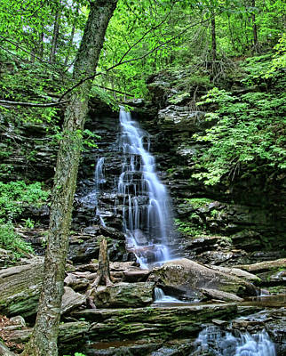 Photograph - Ricketts Glen S P - Ozone  Falls by Allen Beatty