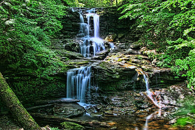 Photograph - Ricketts Glen S P - Shawnee Falls by Allen Beatty