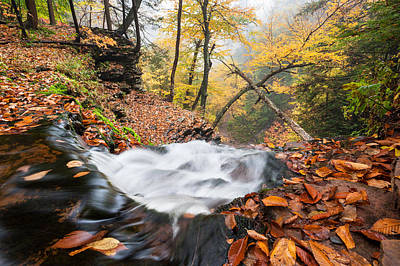 Photograph - Ricketts Glen State Park Ganoga Falls Allegheny Mountains Pennsylvania by Mark VanDyke