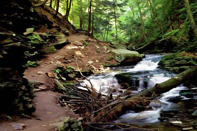 Photograph - Ricketts Glen Trail 030 by Scott McAllister