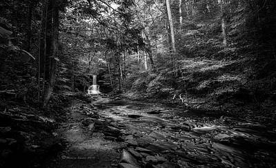 Ricketts Glen Photograph - Ricketts Surprise by Marvin Spates