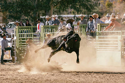 Photograph - Ride Bull 3 by John Swartz