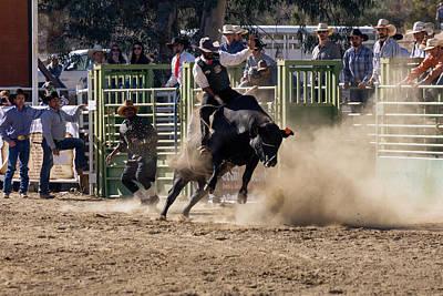 Photograph - Ride Bull 4 by John Swartz