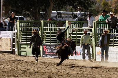 Photograph - Ride Bull by John Swartz