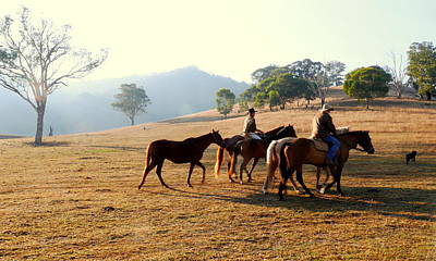 Photograph - Ride In The Hills. by Lexa Harpell