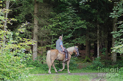 Photograph - Ride In The Woods by Michelle Meenawong