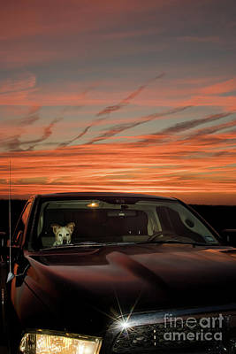 Photograph - Ride Into That Sunset by Robert Frederick
