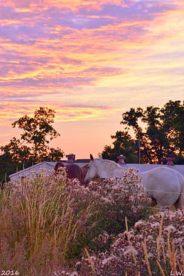 Photograph - Ride Off Into The Sunset by Lisa Wooten