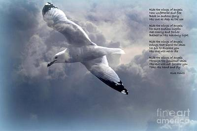 Photograph - Ride The Wings Of Angels by Rick Rauzi