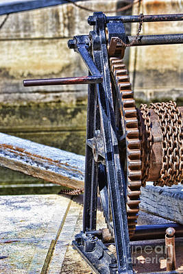 Photograph - Rideau by Traci Cottingham