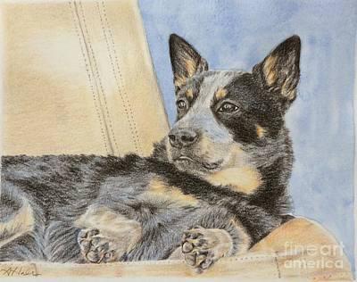 Cattle Dog Mixed Media - Rider by Amanda Hall