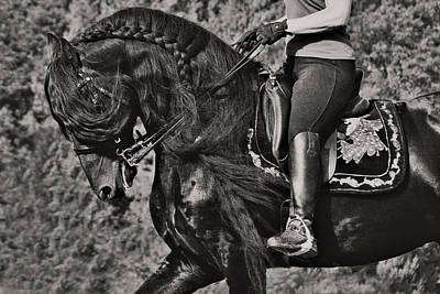 Art Print featuring the photograph Rider And Steed Dance D6032 by Wes and Dotty Weber