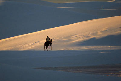 Photograph - Rider In The Sand #5 by Cindy McIntyre