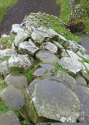 Photograph - Ridge Of Giants Causeway by Barbie Corbett-Newmin