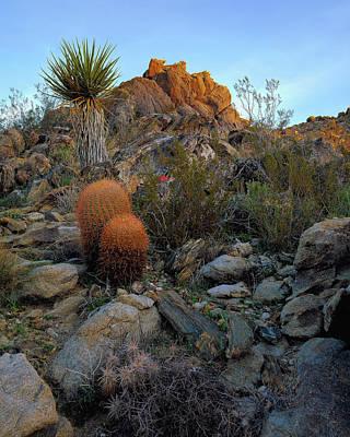 Photograph - Ridge Route Colors by Paul Breitkreuz