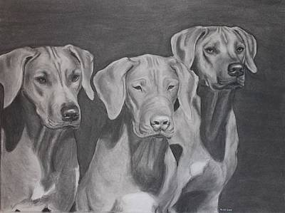 Custom Pet Portrait Drawing - Ridgebacks by Ruthie Sutter