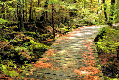 State Natural Area Painting - Ridges Sanctuary Boardwalk by Christopher Arndt