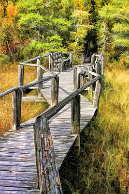 Wetland Painting - Ridges Sanctuary Crossing by Christopher Arndt