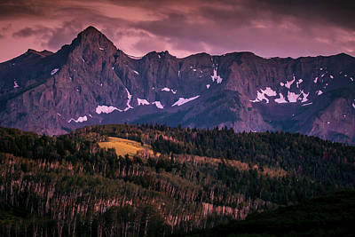 Photograph - Ridgways Majesty by Linda Unger
