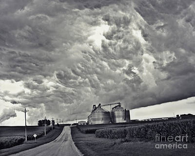 Photograph - Riding Out The Storm by Kathy M Krause