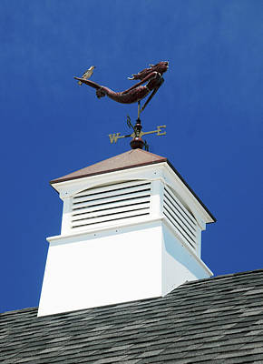 Photograph - Riding The Vane by Richard Gibb