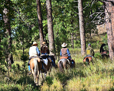 Photograph - Riding Trails In The Black Hills by Kathy M Krause