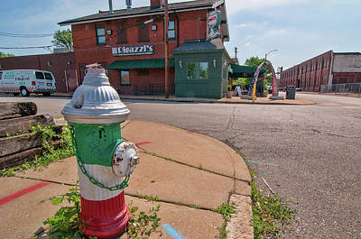 Photograph - Rigazzi's On The Hill by Steve Stuller