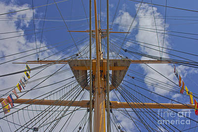 Photograph - Rigging by Terri Waters