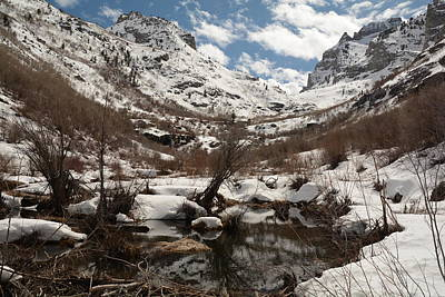 Photograph - Right Fork Canyon by Jenessa Rahn