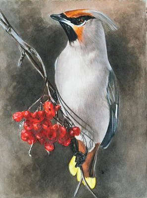 Cedar Waxwings Painting - Righteous by Barbara Keith