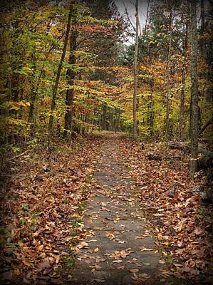 Photograph - Rim Rock Path by Sandy Keeton