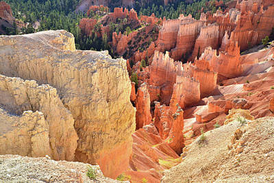 Photograph - Rim Trail Near Inspiration Point by Ray Mathis