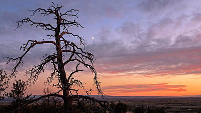 Photograph - Rimrock Sunrise by Jack Bell