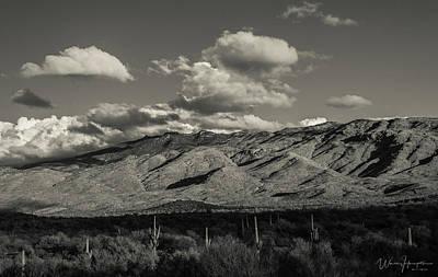Photograph - Rincon Mountains, Saguaro National Park, Az - 1638,sw by Wally Hampton
