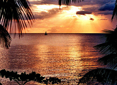 Rincon Sunset Art Print by Michael  Cryer