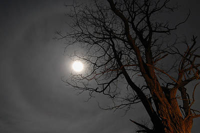 Photograph - Ring Around Moon by Alan Lenk