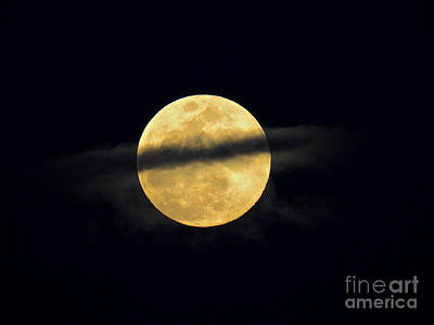 Photograph - Ring Around The Moon by Kate Purdy