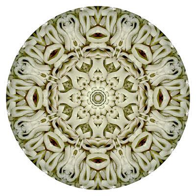 Ring Squid. Digital Art. Original