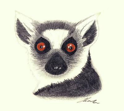 Primate Drawing - Ring Tailed Lemur by Julie L Hoddinott