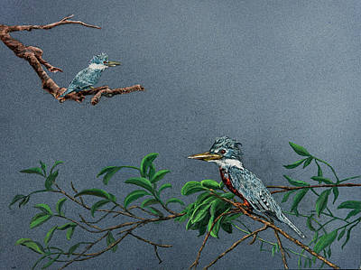 Painting - Ringed Kingfisher by Carol Hanna