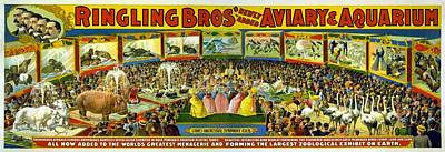 Digital Art - Ringling Brothers Poster by Unknown