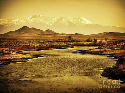 Photograph - Rio Grande Colorado by Tim Richards