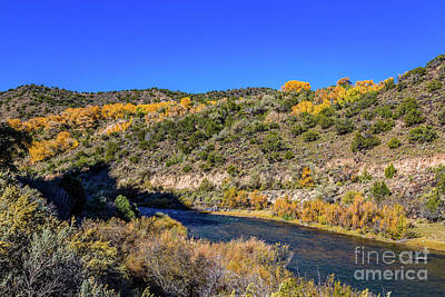 Photograph - Rio Grande Gold by Jon Burch Photography